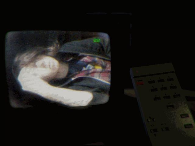 Apartment Simulator