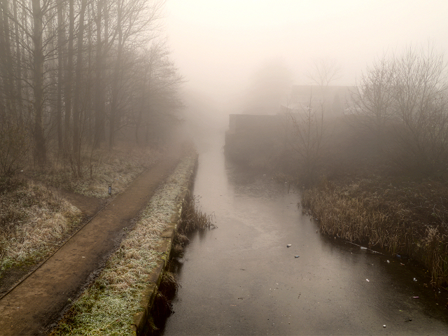 Fog Lights and Foul Deeds (Tom Sykes)